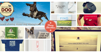 10 Christmas Gifts for Dog Owners