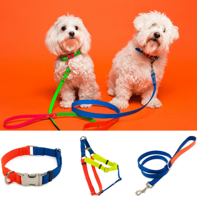 Leadthewalk.com  - Ware of The Dog Collars & Leads