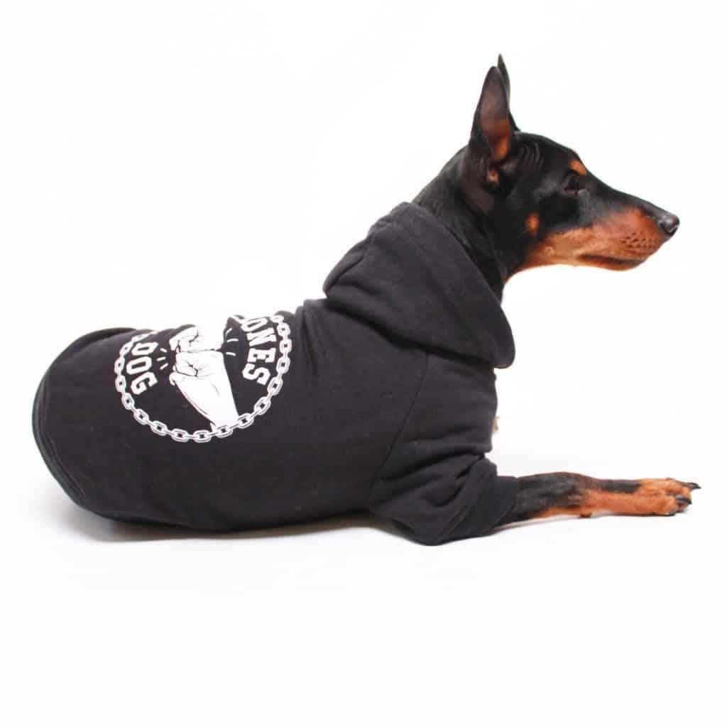 leadthewalk.com - pethaus hoodie