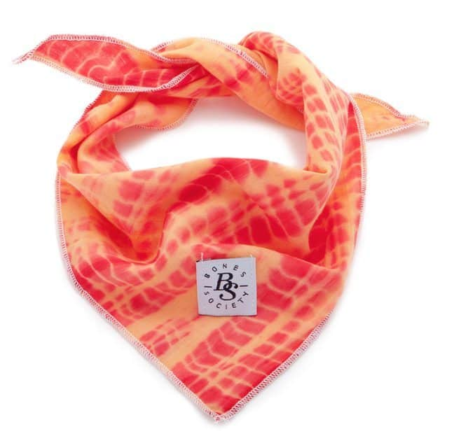 Leadthewalk.com - Bones Society Red Shibori Bandana