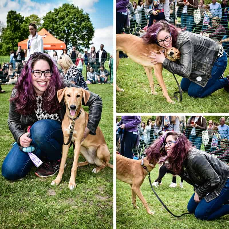 All Dogs Matter Great Hampstead Bark Off - Happiest Hound & Owner