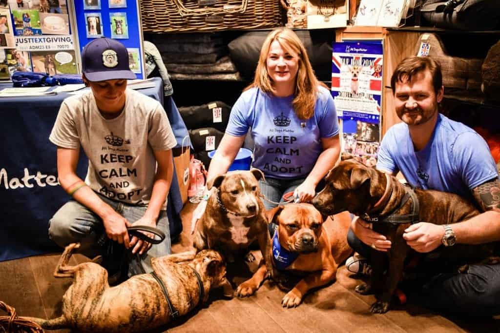 All Dogs Matter London Dog Rescue Team