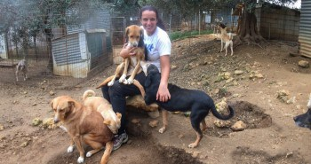 FB Animal Rescue Kefalonia Volunteering