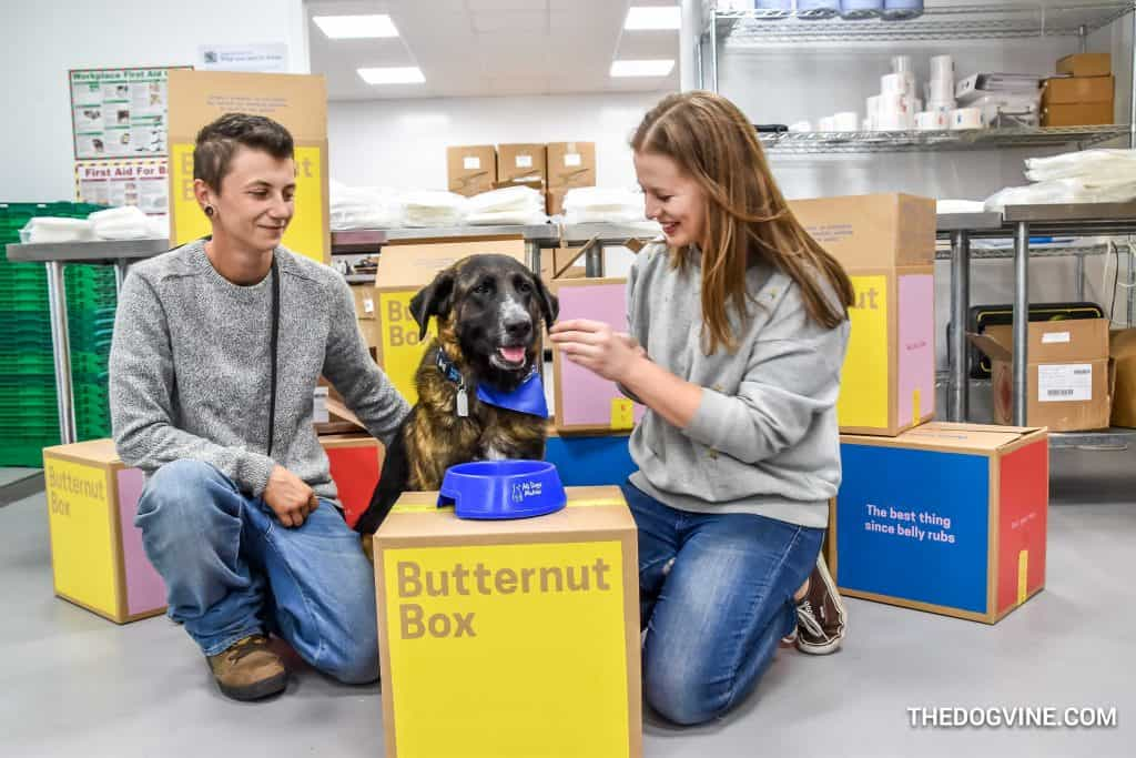 Butternut Box 10