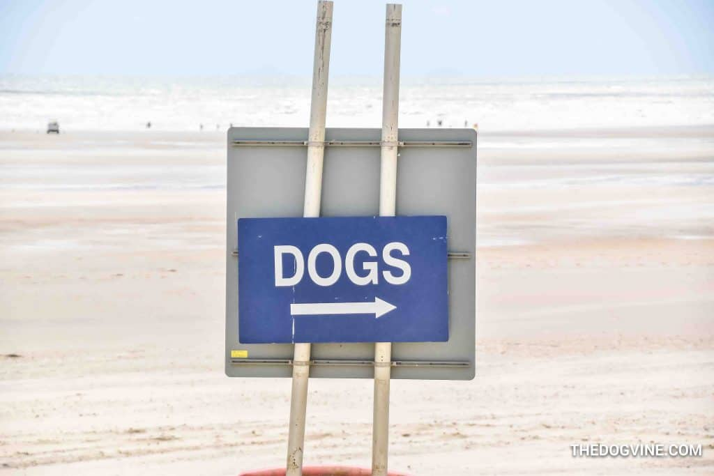 Camber Sands 1