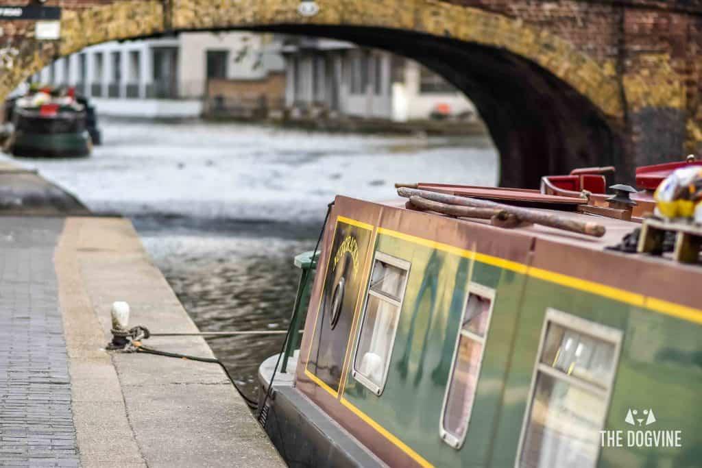 All Dogs Matter Narrowboat Doggy Brunch DSC_0127