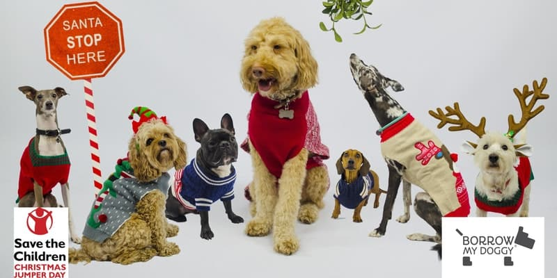 December 2017 Events Agenda For London Dogs - Doggy Christmas Jumper Day