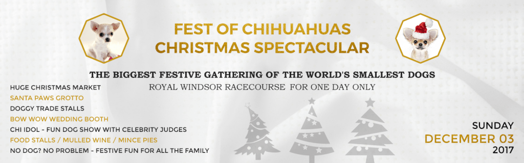 Fest of Chihuahuas Christmas Special