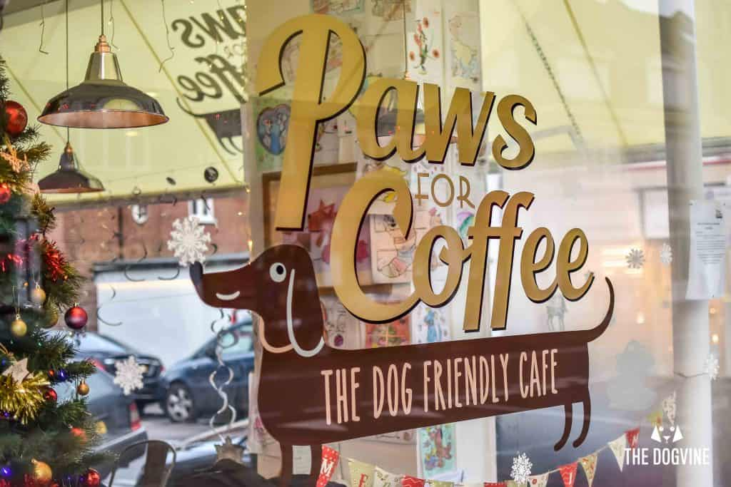 Dog-Friendly Cafe - Paws for Coffee Sheen 2
