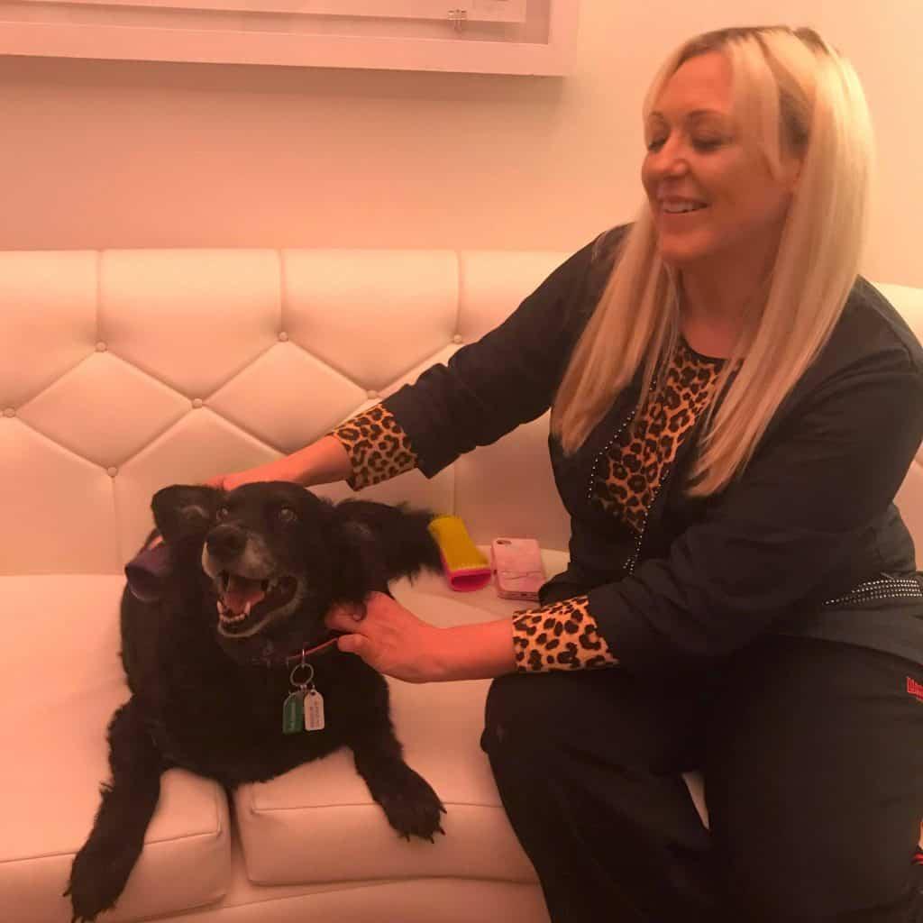 Introducing The Pet Teezer, The New Tangle Teezer For Dogs 12