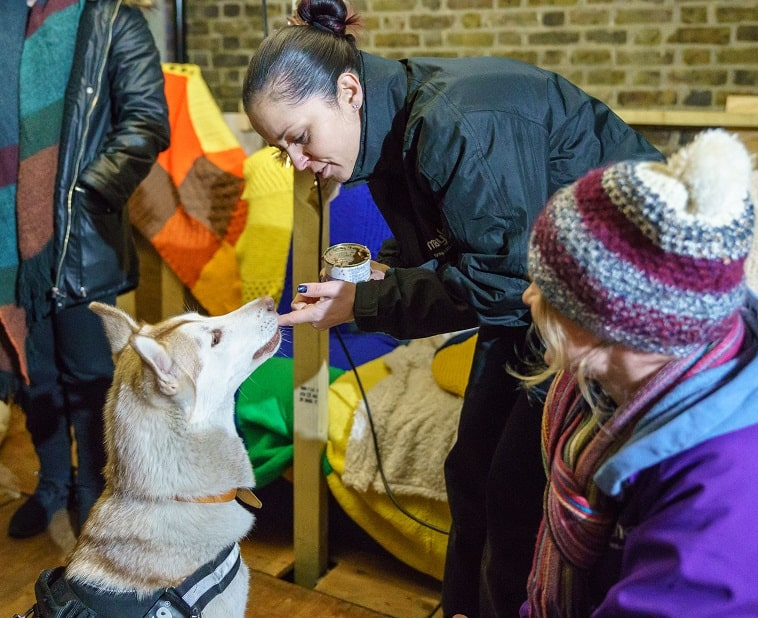 Mayhew Helps Dogs Of The Homeless At Crisis At Christmas Sonic with Animal Welfare Officer Tania and Mayhew Vet Emma