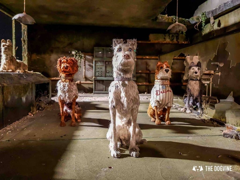 Dog-Friendly Cinema - The-Isle-of-Dogs-Exhibition-6