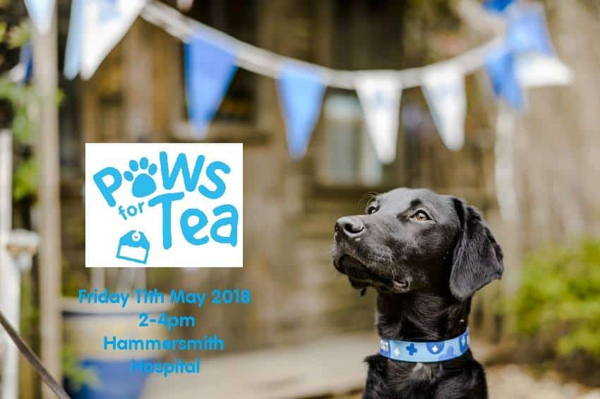 London Dog Events - Paws for Tea 2018