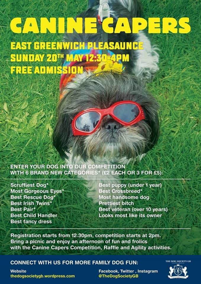 London Dog Shows   Canine Capers East Greenwich Pleasaunce