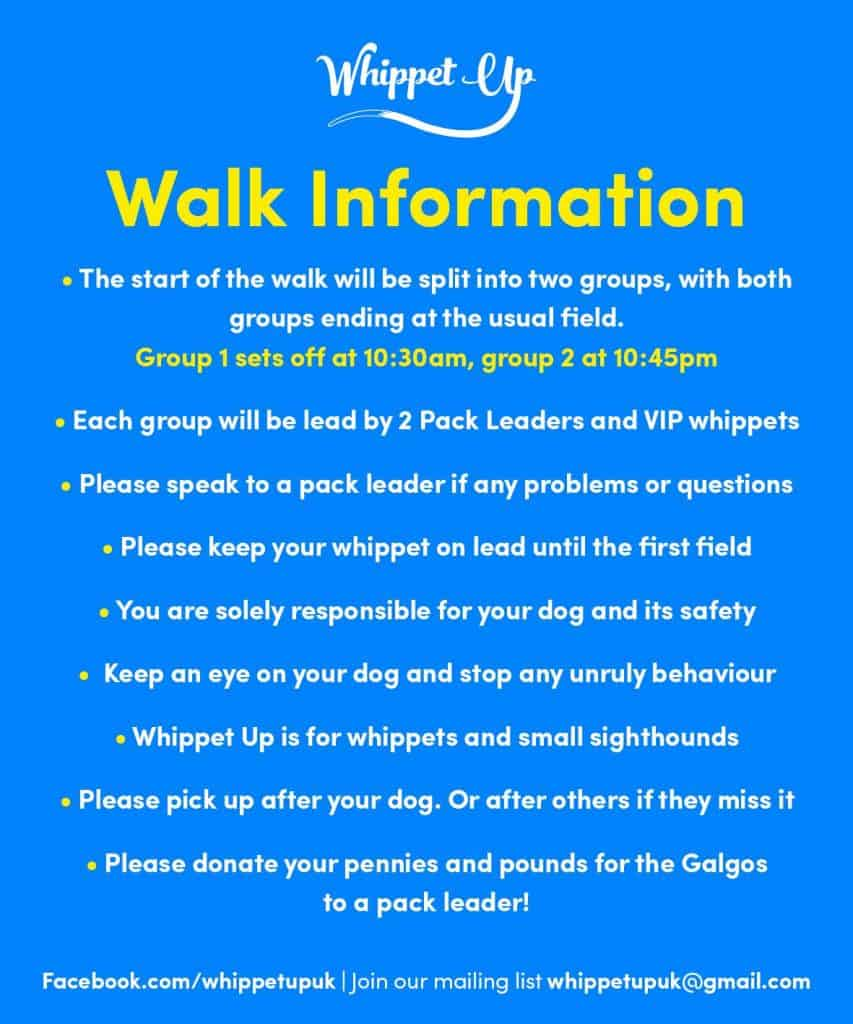 London Dog Events - Whippet Up April 2