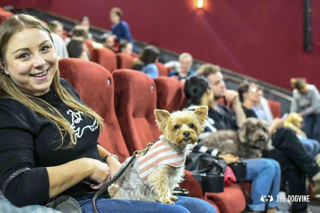 Picturehouse Central Dog-Friendly Cinema Isle of Dogs 44