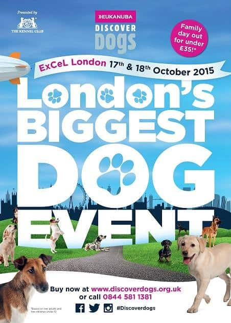 DISCOVER DOGS 2015