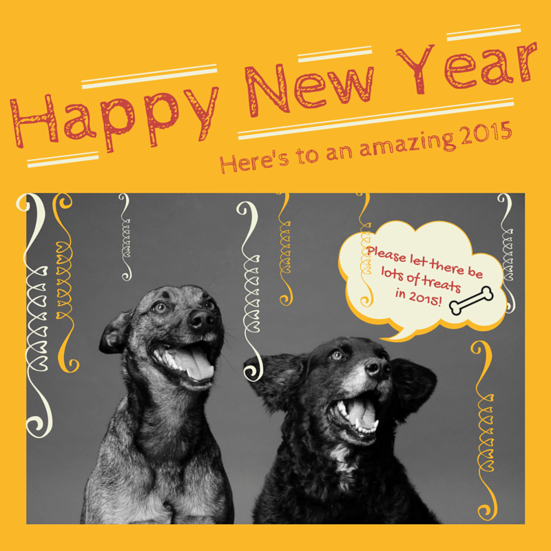 Wordless Wednesday & Happy New Year!