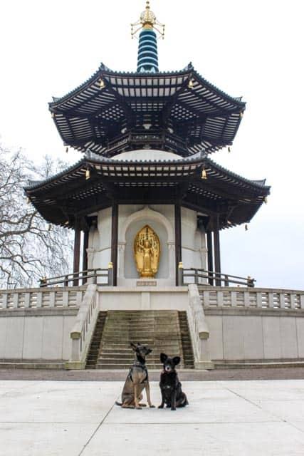London Peace Pagoda - Battersea Park
