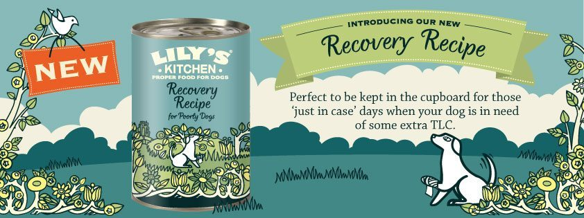 New - Lily's Kitchen Recovery Recipe