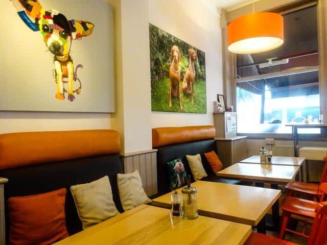 Dog Friendly London Cafes - Cafe Tamra