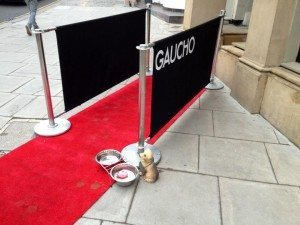 Doggy Sunday at Gaucho VIP Entrance