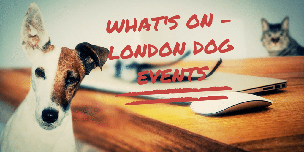 What's On - London Dog Event