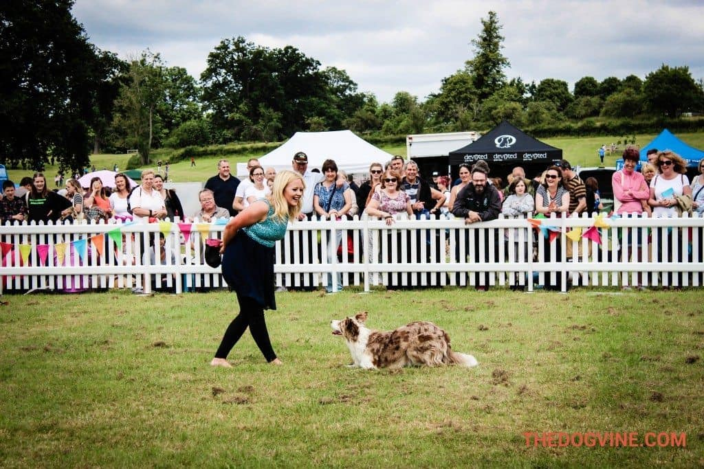 Lucy Heath and Indie DogFest 2015