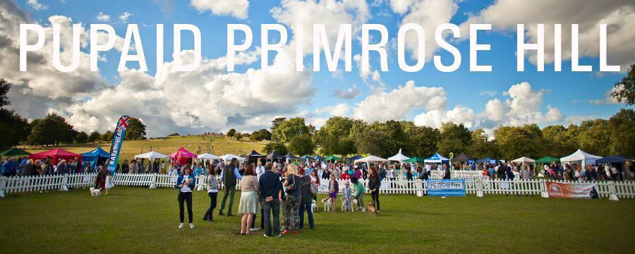 Pupaid 2015 Primrose Hill