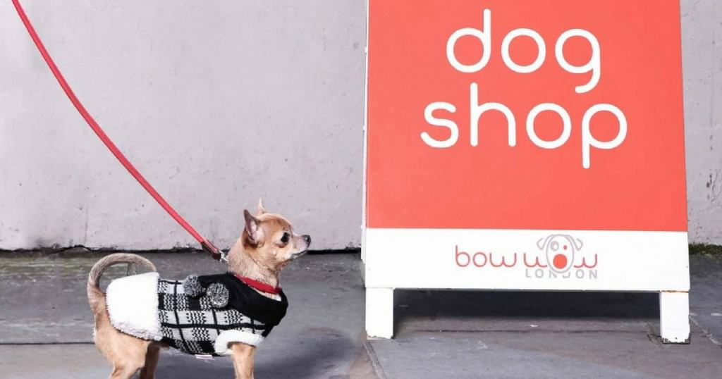 London's Most Loved Shop –Bow Wow London