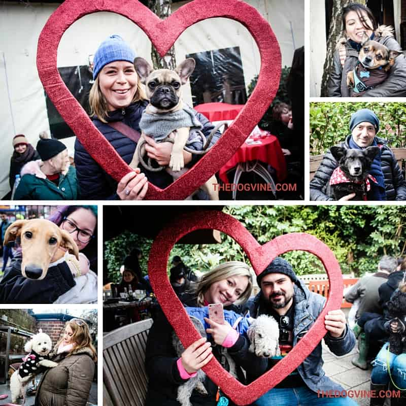 All Dogs Matter Valentines Day Dog Walk 2016 - Lucky in Love