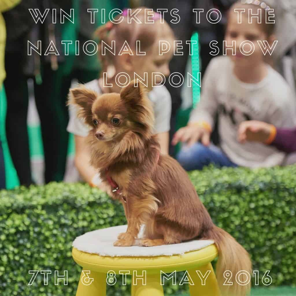 Win tickets to the National Pet Show London