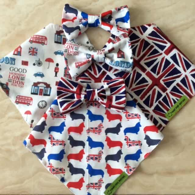 Smart Dog Boutique - Patriotic Pooch