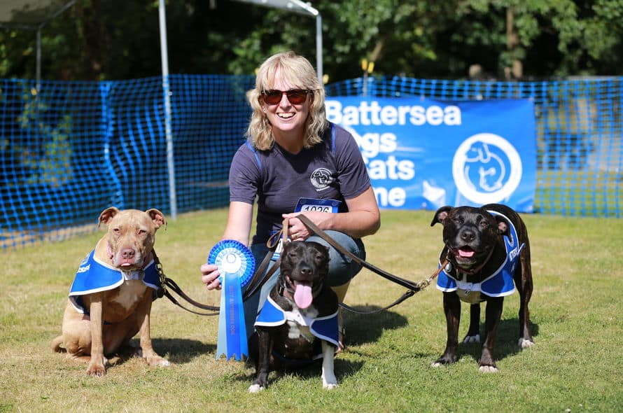 Battersea Old Windsor Fun Day 2017 The Dogvine