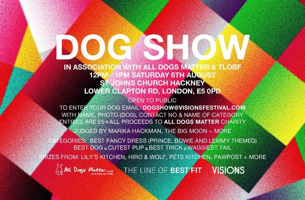 London Dog Events In August - Visions Festival Dog Show