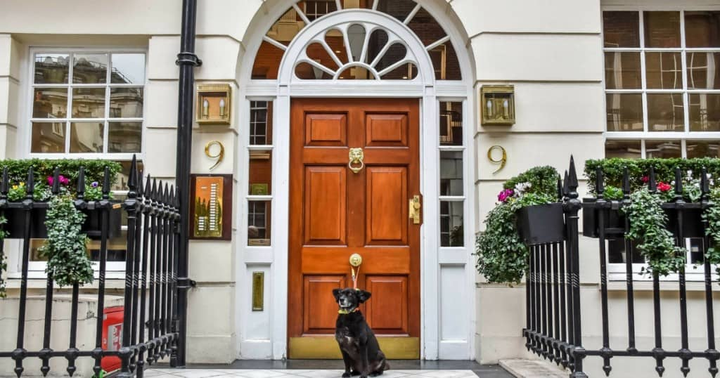 9 Hertford Street | Why This is THE Dog Friendly Place To Stay in Mayfair