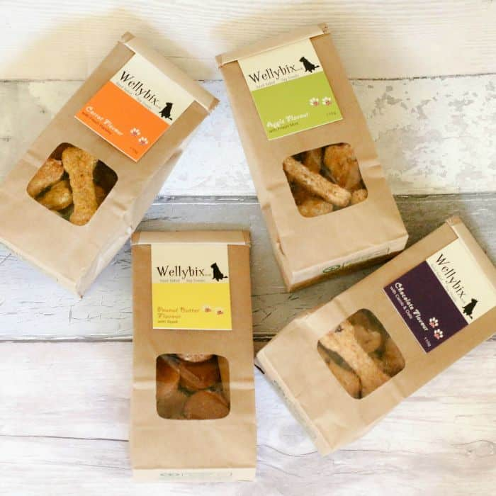 gifts-for-dogs-wellybix