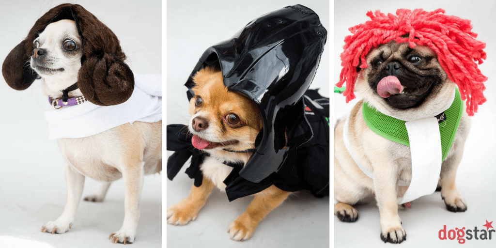 SCI-FIDO | The Geeky Event Not To Be Missed For London Dogs This Month