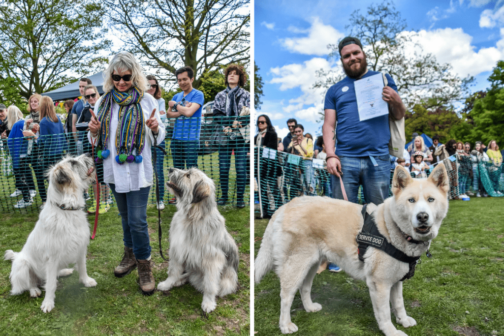 Best Human & Hound Bond 2 - Great Hampstead Bark Off 2017