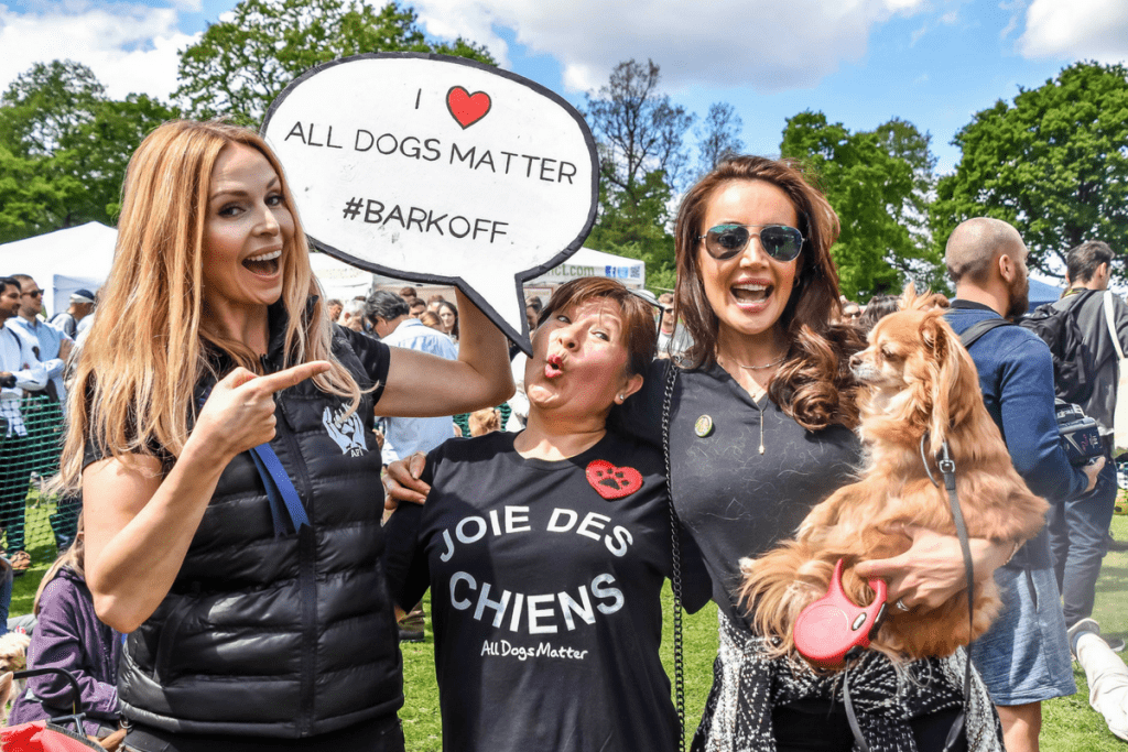 We Love The Great Hampstead Bark Off 2017