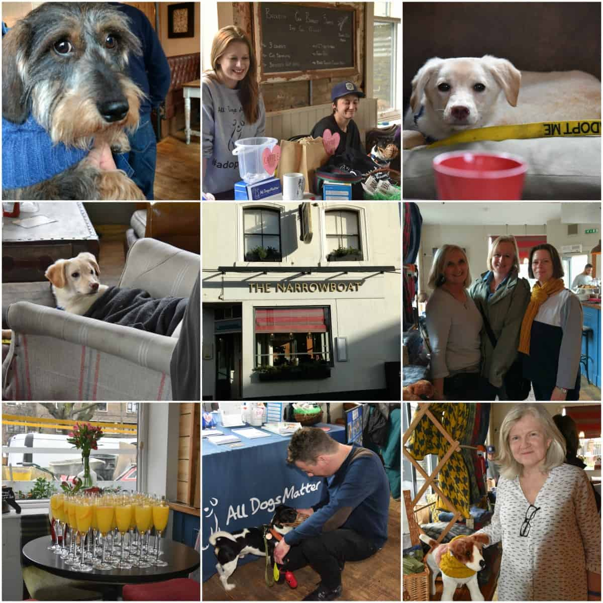 Doggy Brunch Collage - The Narrow Boat