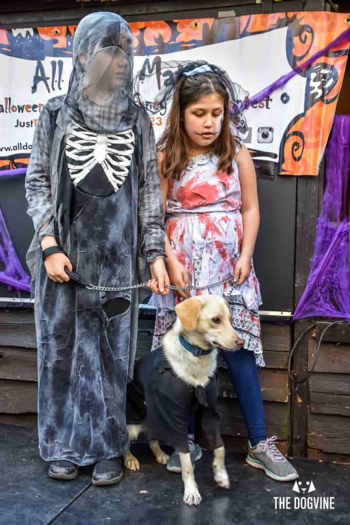All Dogs Matter Halloween Walk and Show 2017 13