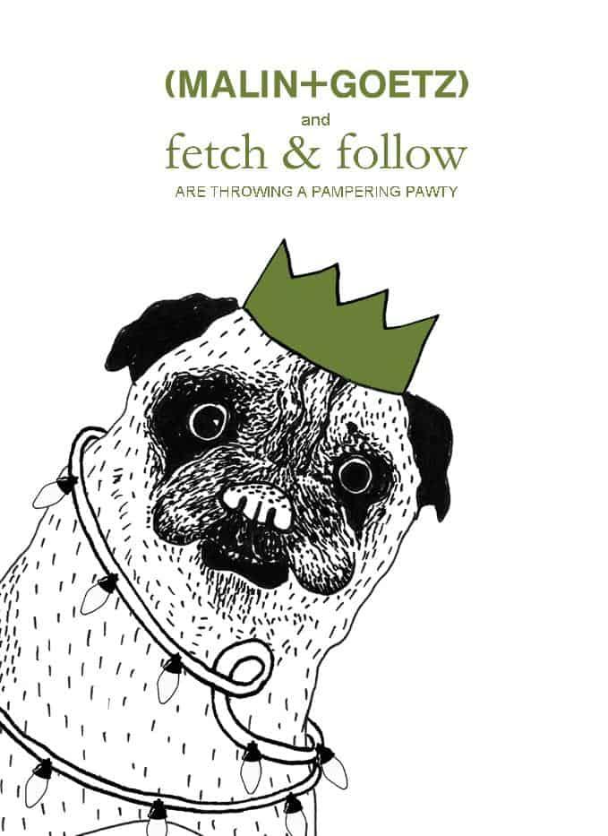FETCH & FOLLOW X MALIN+GOEZ POP UP PARTY FOR DOGS INVITE