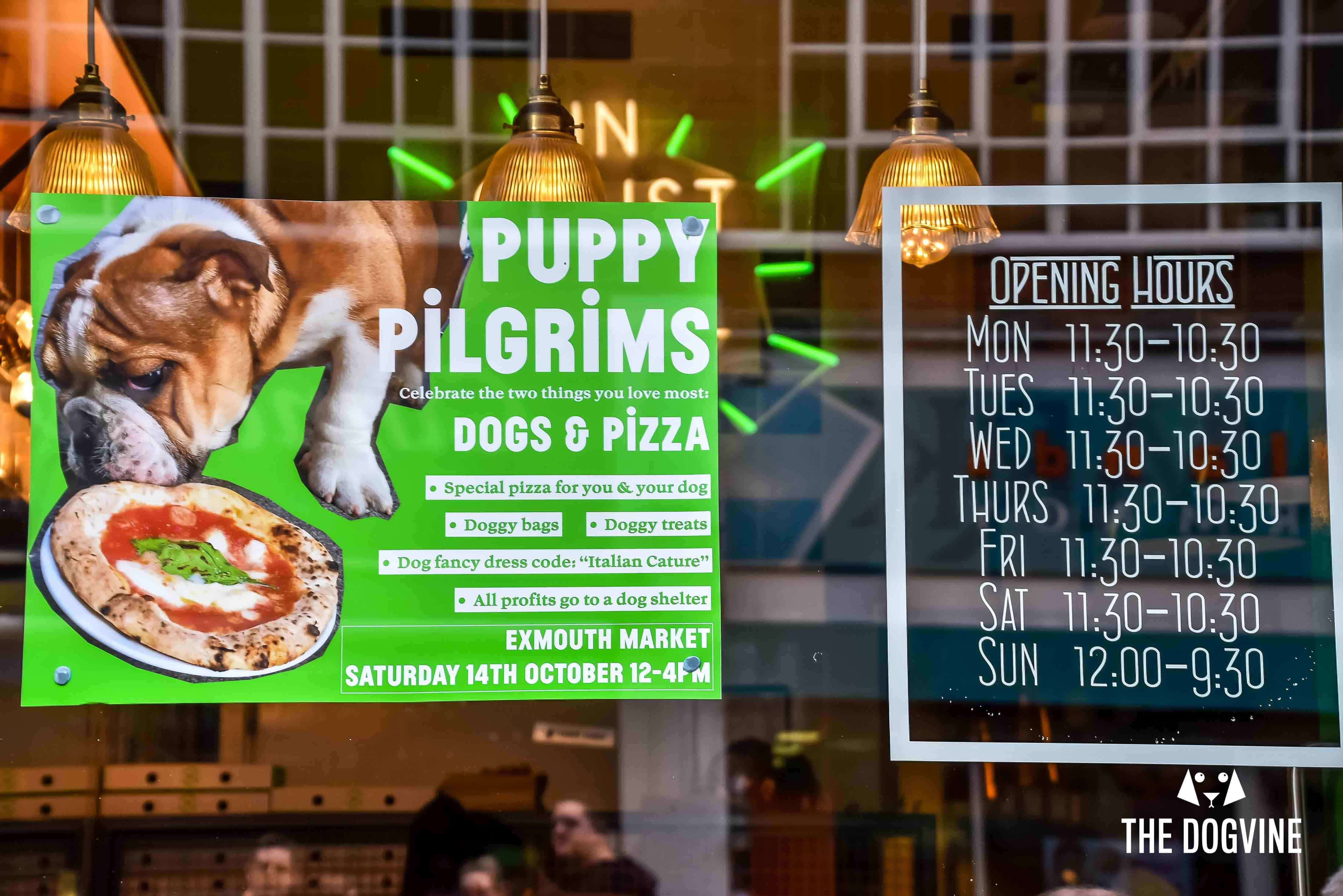 Pooches Get A Pizza The Action At Dog Friendly Pizza Pilgrims