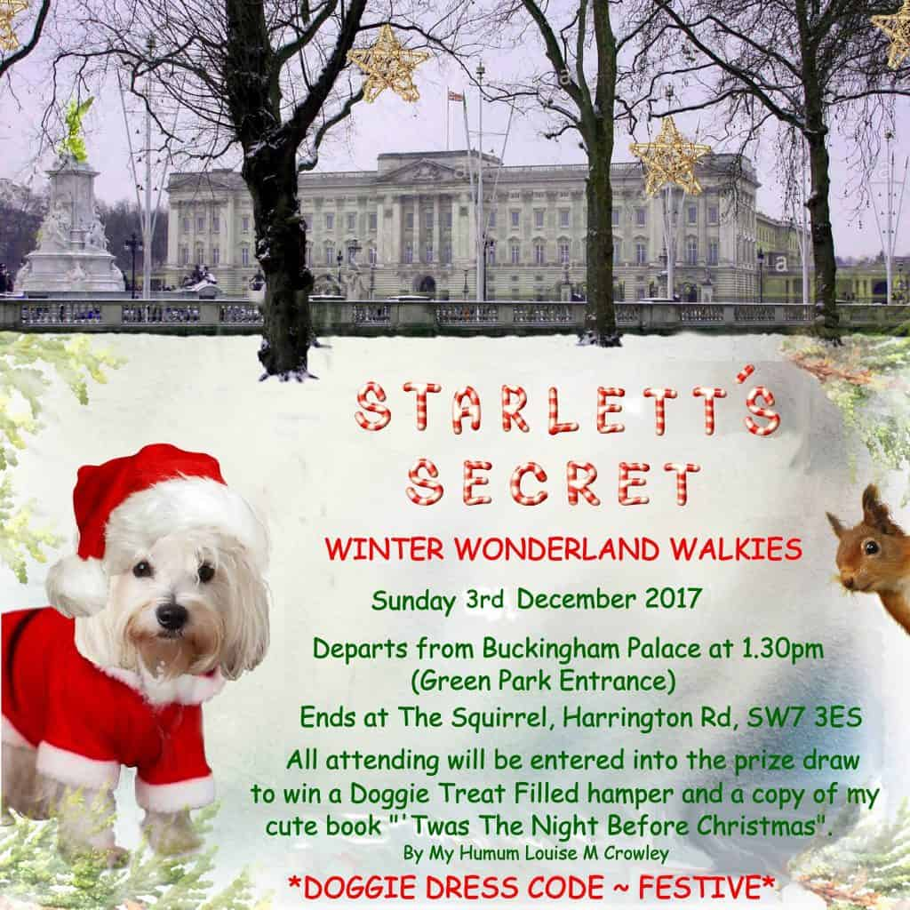 December 2017 Events Agenda For London Dogs - Starletts Secret Winter Wonderland Walkies