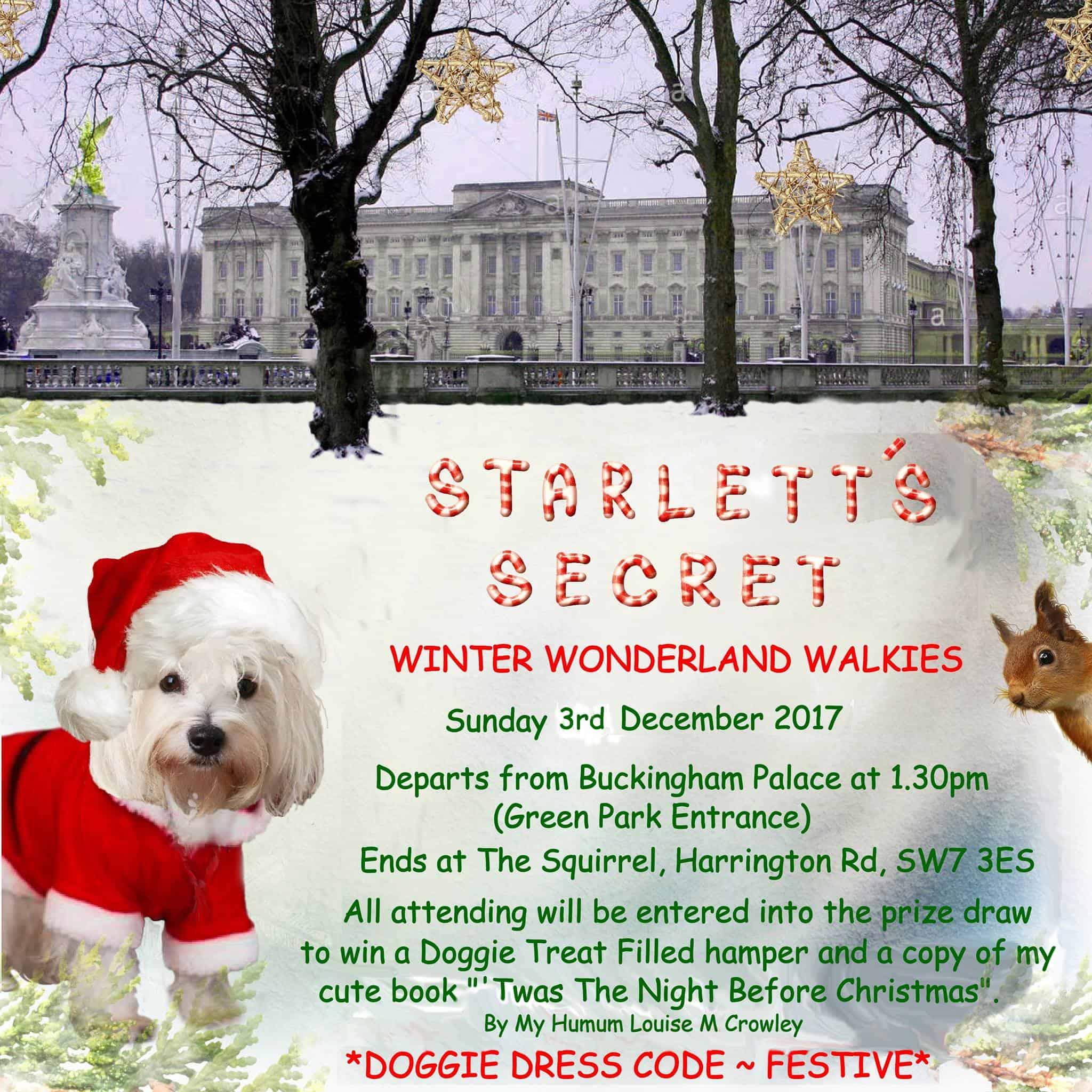 Starletts Secret Winter Wonderland Walkies