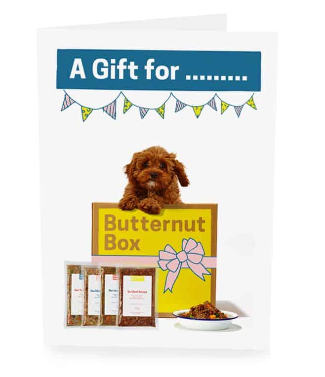 Gifts That Give Back - Butternut Box