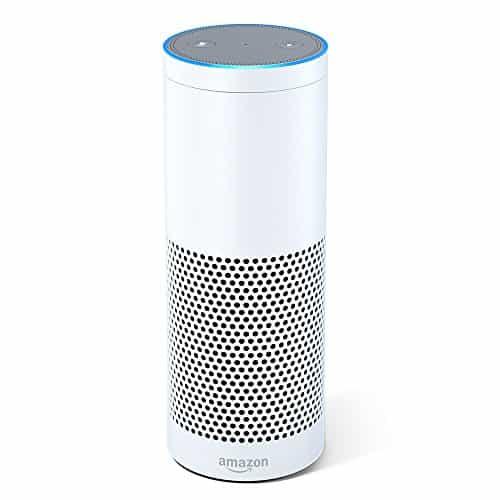 Pet Tech Gifts - Amazon Echo