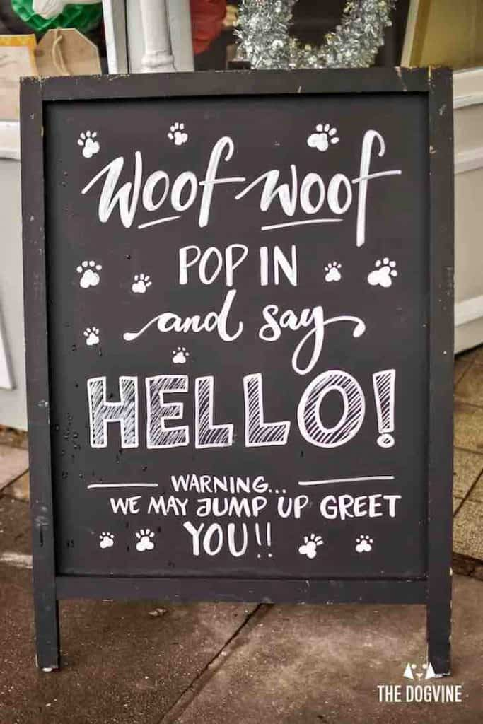 Dog-Friendly Cafe - Paws for Coffee Sheen 1