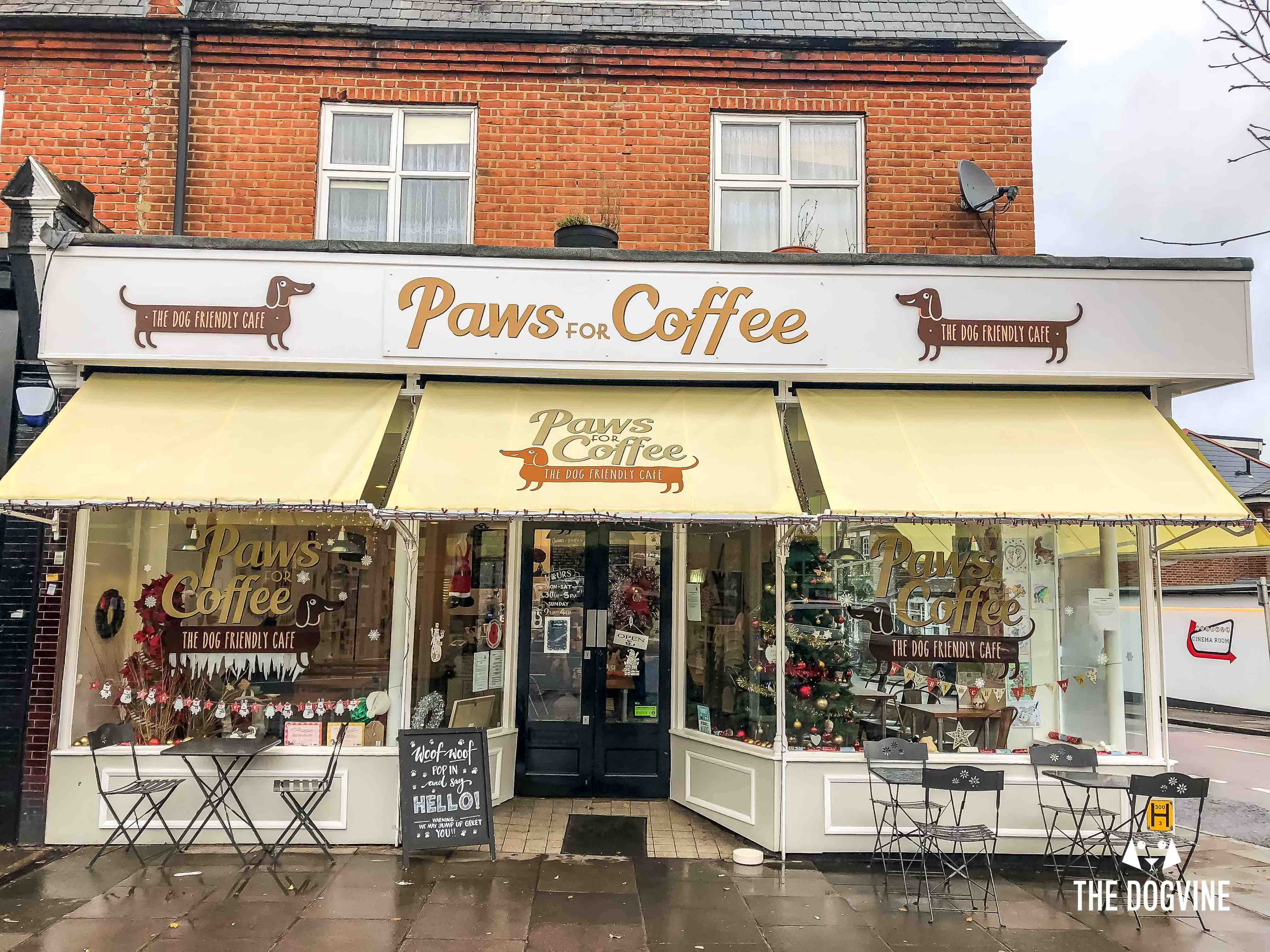 Refuel With Your Pooch At The Dog Friendly Cafe Paws For Coffee